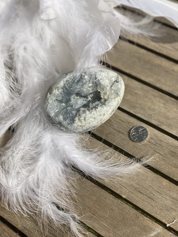 Celestite Egg with 5p