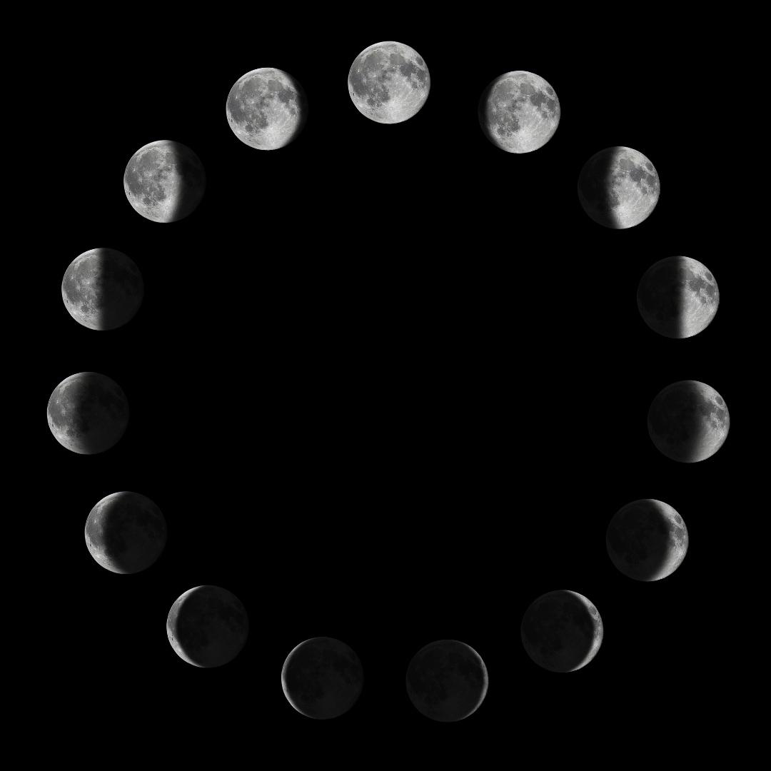 Moon Guides, Workbooks & Bundles